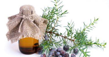 Можно ли использовать масло можжевельника для ухода за телом?