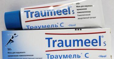 Мазь траумель: от чего помогает лекарство?
