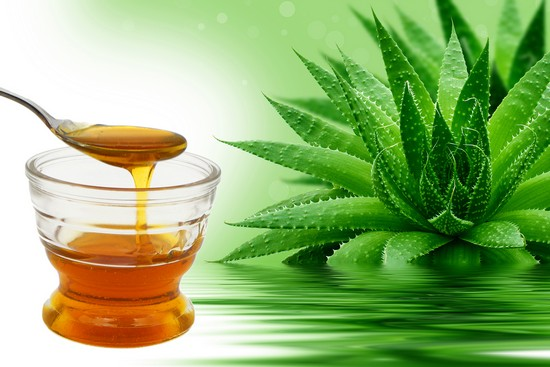 Алоэ с медом: лечебные свойства