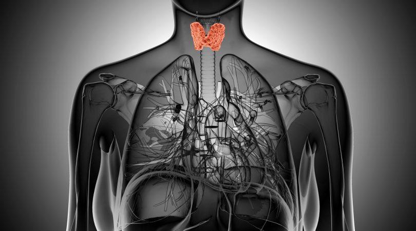 Как лечат аутоиммунный тиреоидит щитовидной железы?