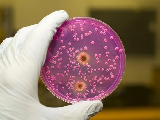 лечение дрожжевого грибка у женщин