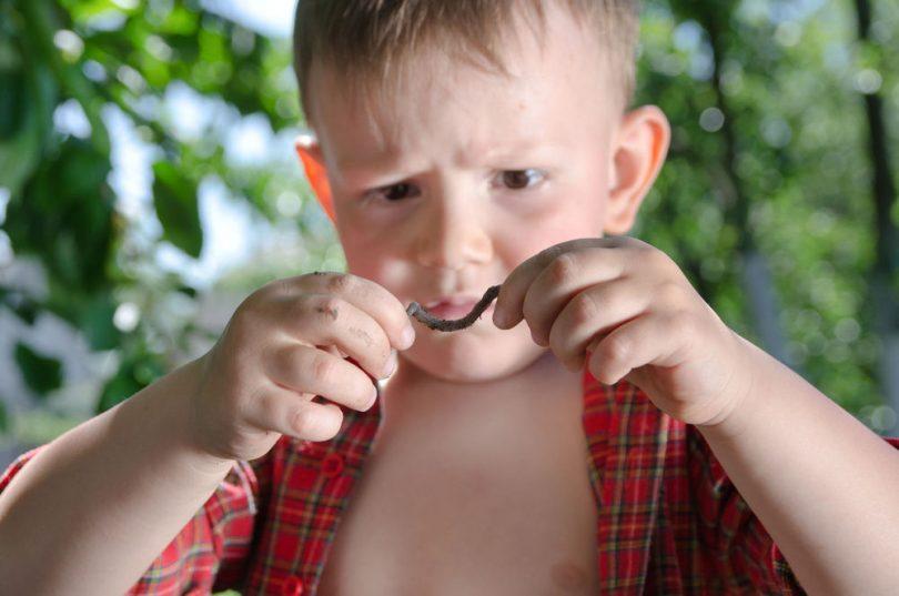 Как вывести острицы у детей?