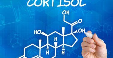 Что такое гормон кортизол?