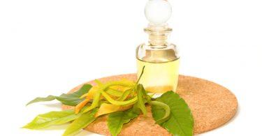 Иланг иланг: свойства эфирного масла
