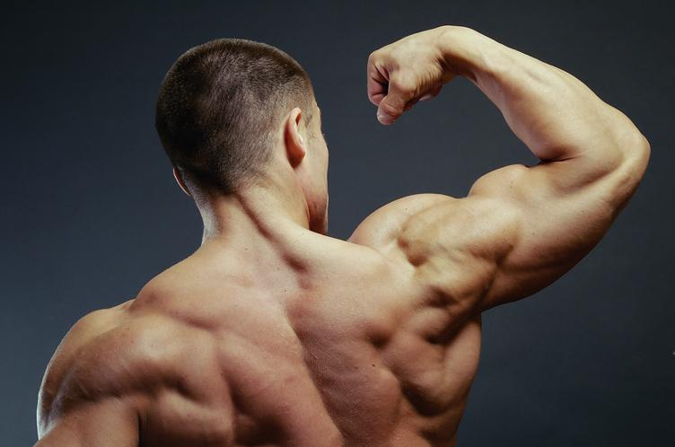 Как подобрать идеальные упражнения на среднюю дельту?