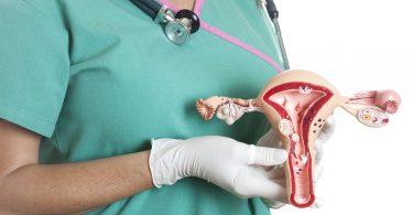 Загиб матки: причины и последствия, как забеременеть