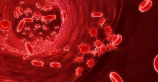 Причины колебаний билирубина в крови