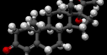 За что отвечает гормон кальцитонин?
