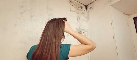 Чем опасен грибок на стенах для здоровья