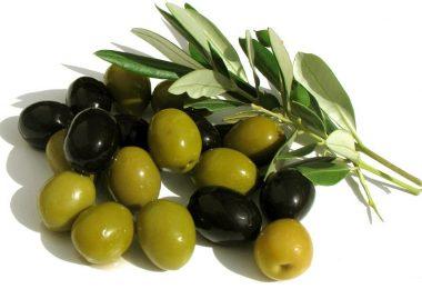 Чем отличаются оливки от маслин? Что полезнее?