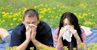 Как избавиться от аллергии навсегда в домашних условиях?