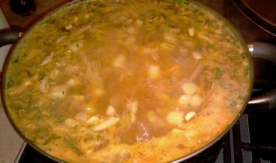 Все хорошенечко перемешиваем и провариваем суп